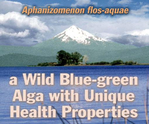 AFA Wild blue green Algae