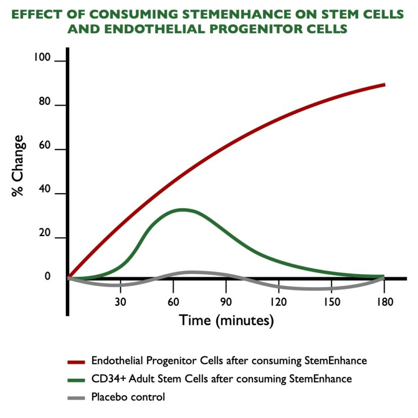Graph Showing how much Adult Stem Cells increase in percentage terms after consuming StemEnhance®